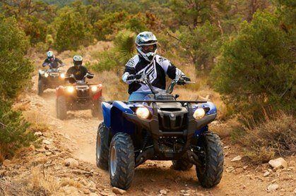 2014-Yamaha-Grizzly-700-Action-Group